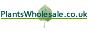 Plants Wholesale