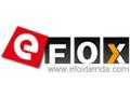 My eFox